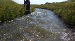 fluvial and hydrological research is key to every TroutWater project